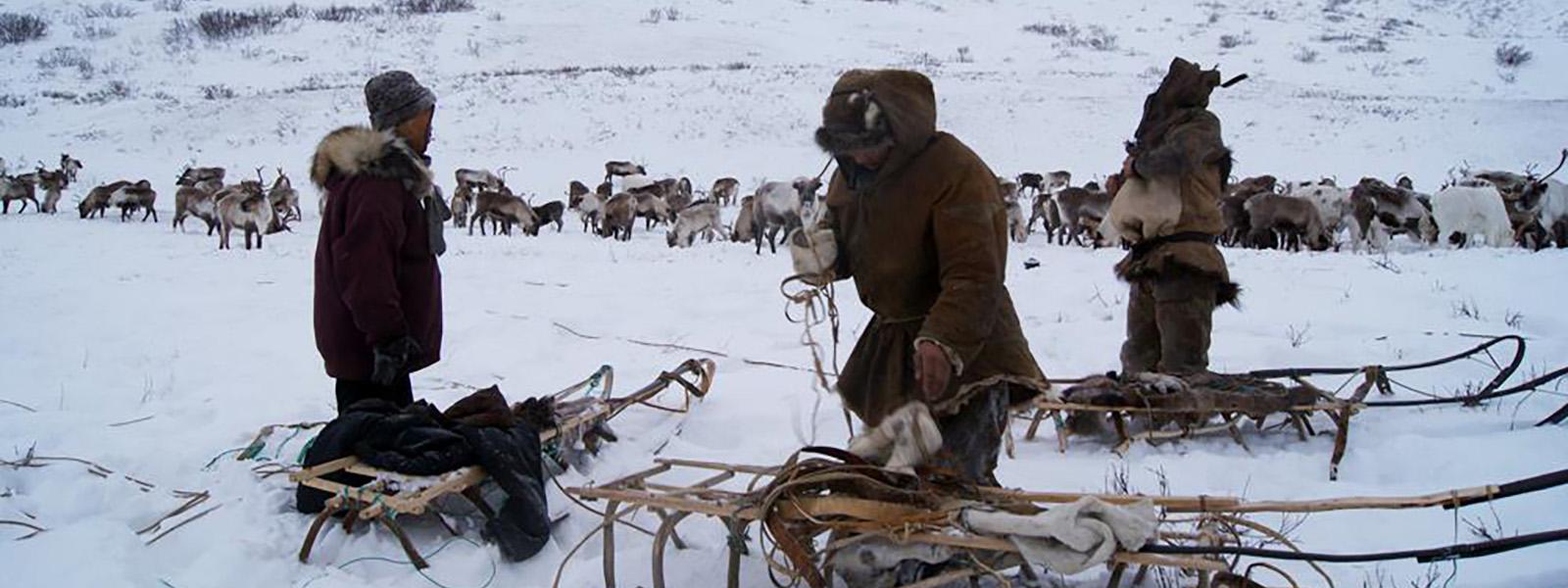 arctic landscape photograph
